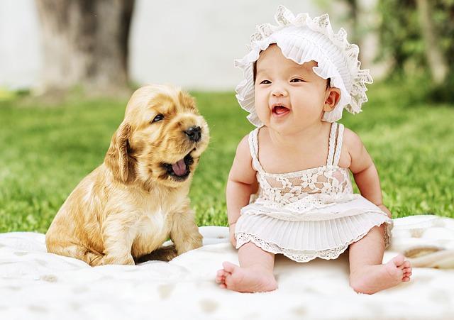 malé dítě se psem.jpg